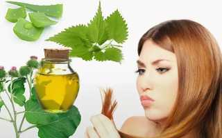 Маски для волос с репейным маслом в домашних условиях против выпадения, для роста и восстановления волос