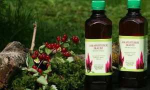 Амарантовое масло: свойства и применение. Что это за растение — амарант, его польза и вред
