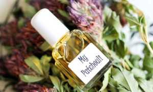 Пачули — эфирное масло: свойства, для чего применяется в косметологии, быту, народной медицине