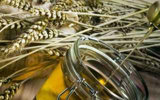 Применение масла зародышей пшеницы для лица: от морщин, против угревой сыпи, для питания и омоложения кожи