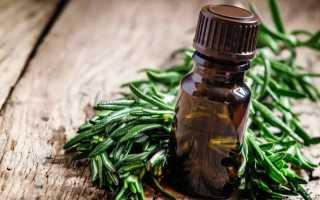 Применение масла розмарина для волос — 13 рецептов для максимальной пользы
