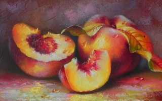 Масло персиковое косметическое и пищевое: инструкция по применению