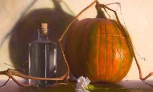 Чем полезно тыквенное масло для организма, его свойства и состав, как принимать