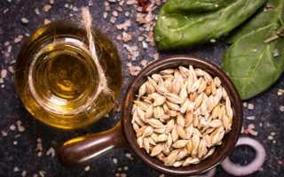Применение масла зародышей пшеницы для красивых и здоровых волос