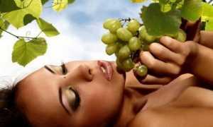 Масло виноградной косточки для массажа: для борьбы с целлюлитом, от растяжек, для красоты и упругости тела