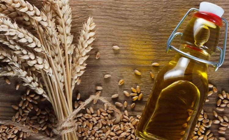 Масло пшеницы для сухой кожи лица thumbnail