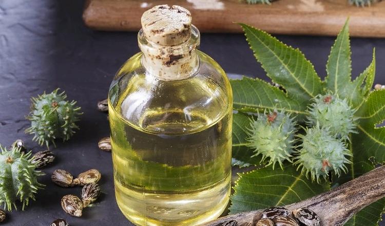 Касторовое масло для роста
