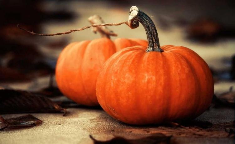 Осенняя тыква