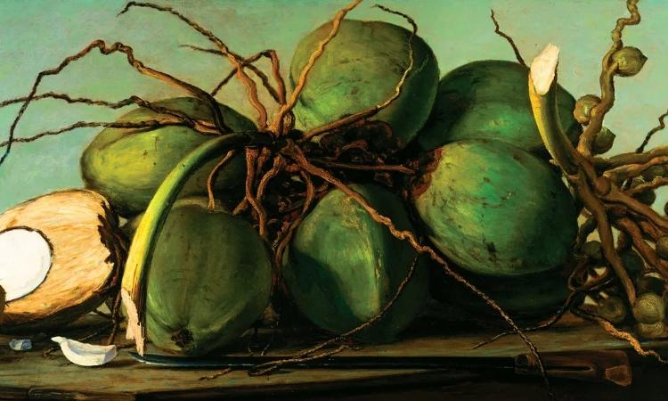 Плоды кокосовой пальмы